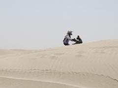 dune19